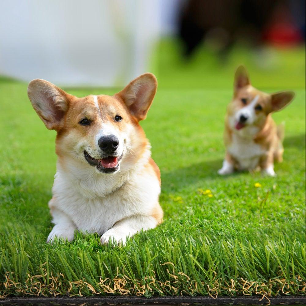 Primeturf Artificial Grass Synthetic Turf Fake Lawn 1mx20m Plastic Plant 30mm