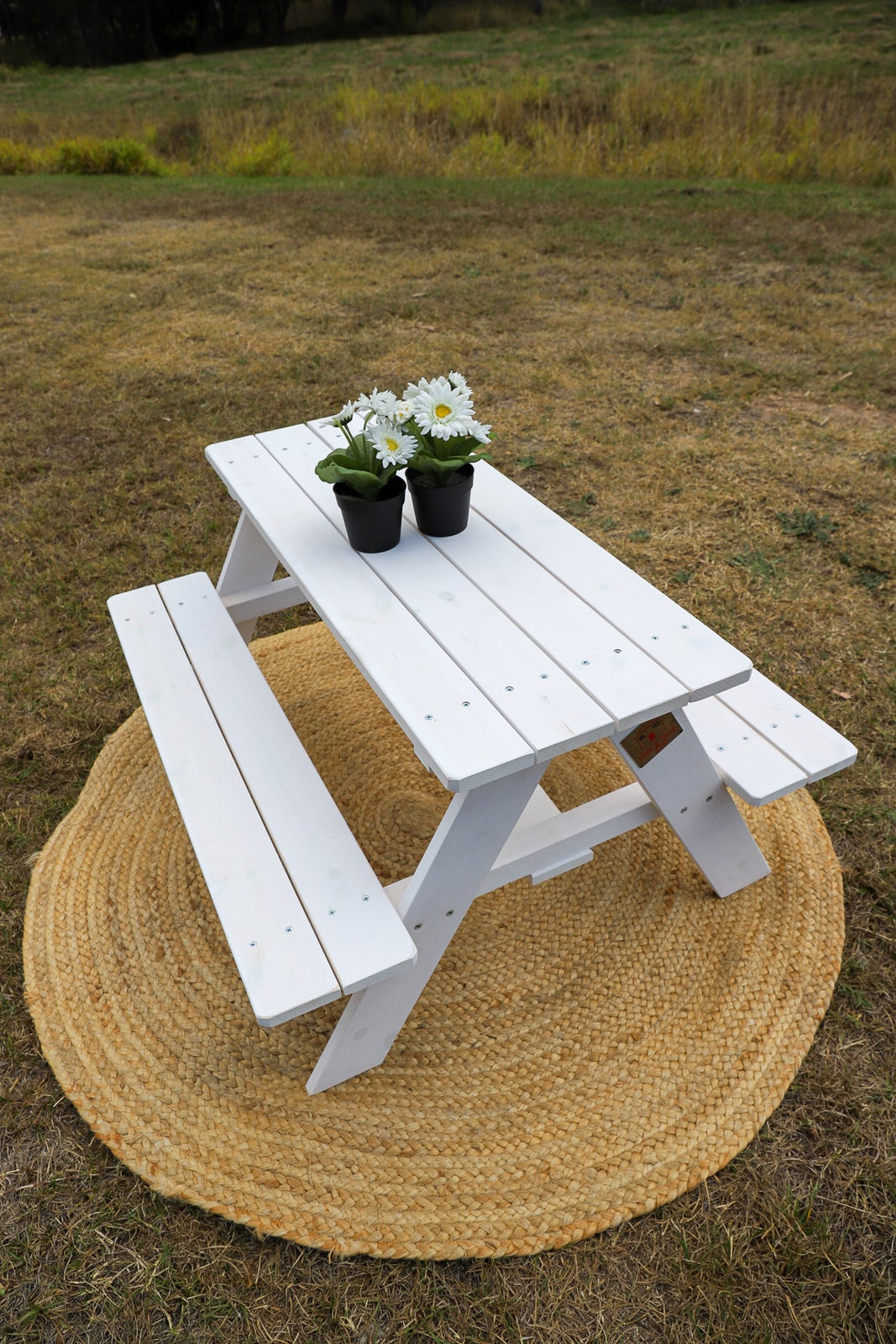 Stainless Steel Bathroom Vanity Cabinet, Plain Picnic Table White Stain Buy Kids Picnic Tables 1099962