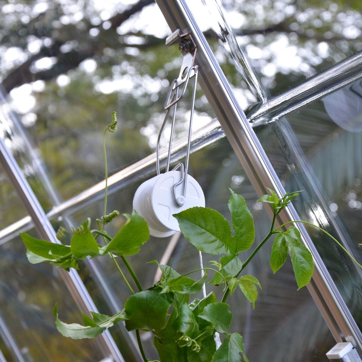 Maze Greenhouse Trellising Kit