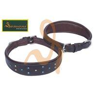 RUMANI Qualiy Soft Padded Leather DOG COLLAR, Multicolor Stone Design, Brass H/W