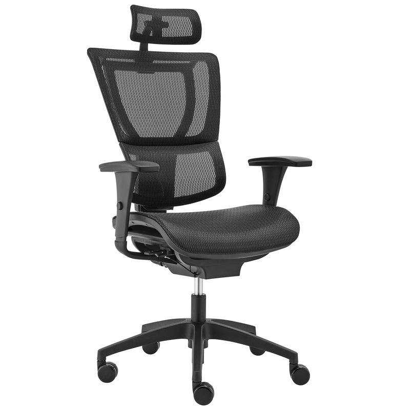 Ergohuman Fit IOO Executive Office Chair High Back Black Frame