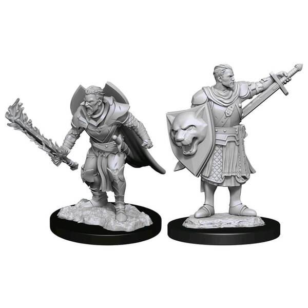 Pathfinder Deep Cuts Miniatures: Human Champion Male