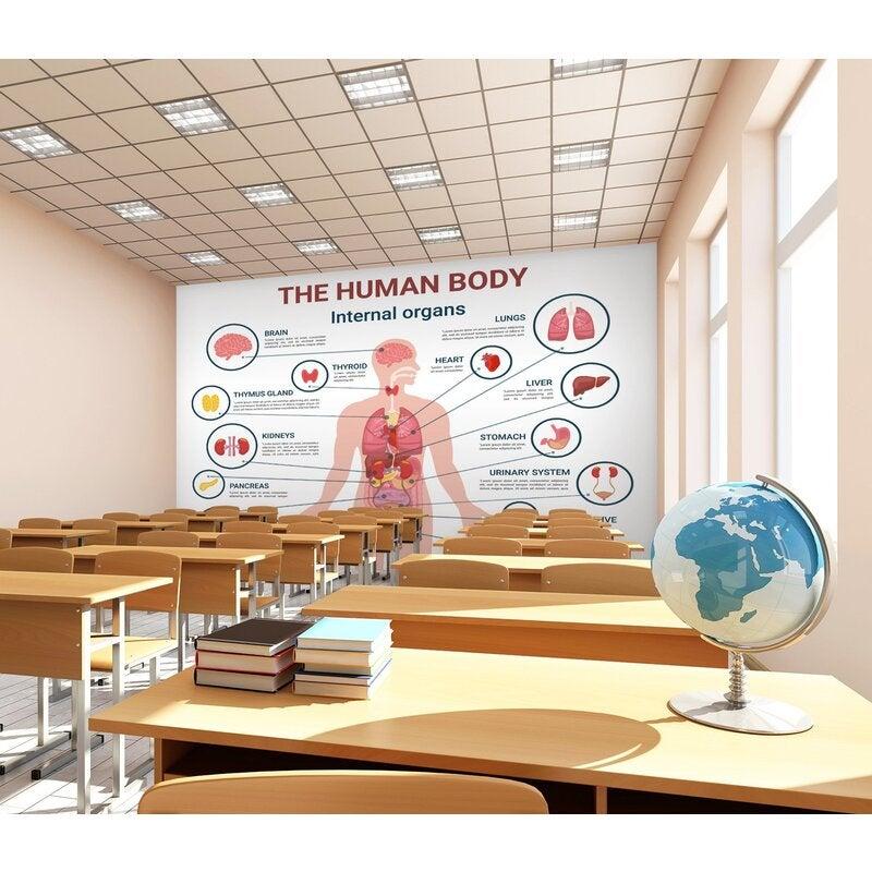 3D Human Organs 198 Wall Murals