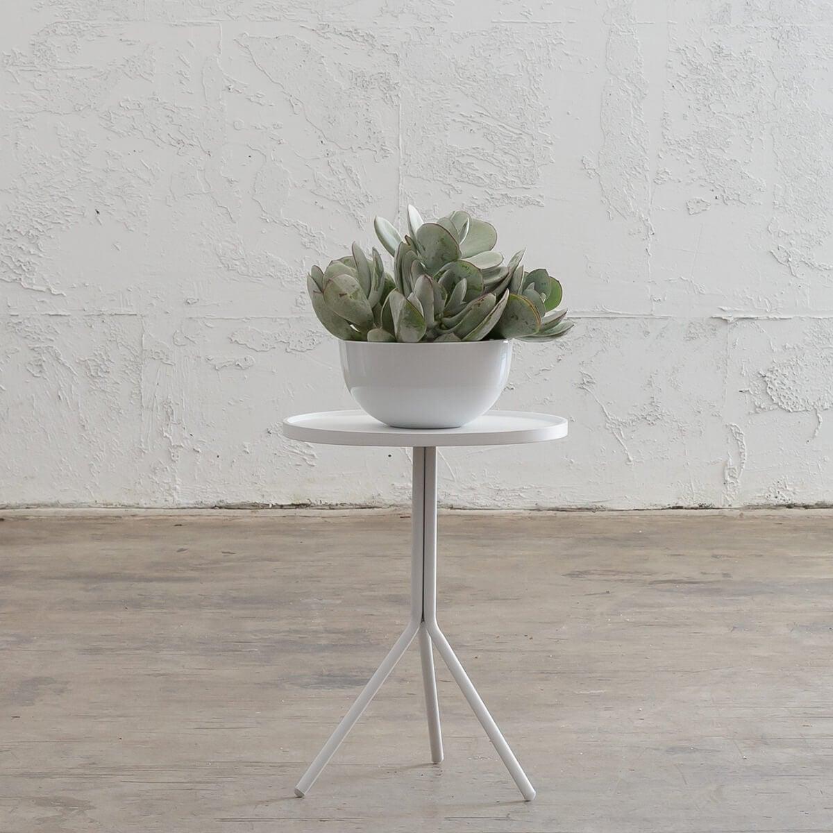 PALOMA OTKA ROUND SIDE TABLE - WHITE - LARGE