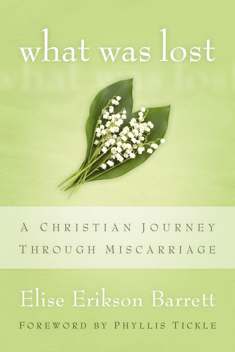 What Was Lost: A Christian Journey Through Miscarriage Paperback Book