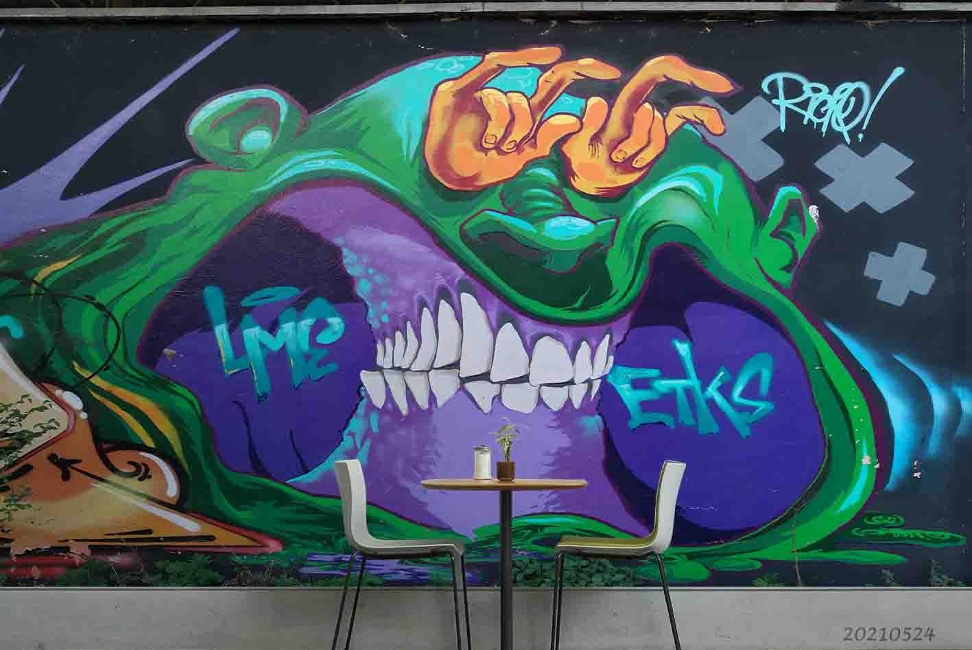 3D Abstract Graffiti Color Monster Wall Mural Wallpaper SWW152