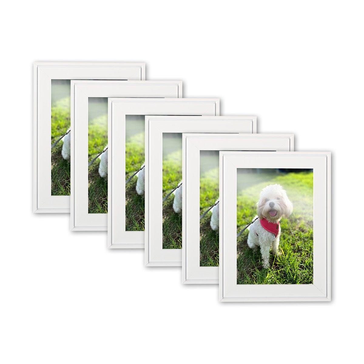 Home Master® 6PCE Photo Frames Bevel Edging Matte Finish 3 Colours 4' x 6'