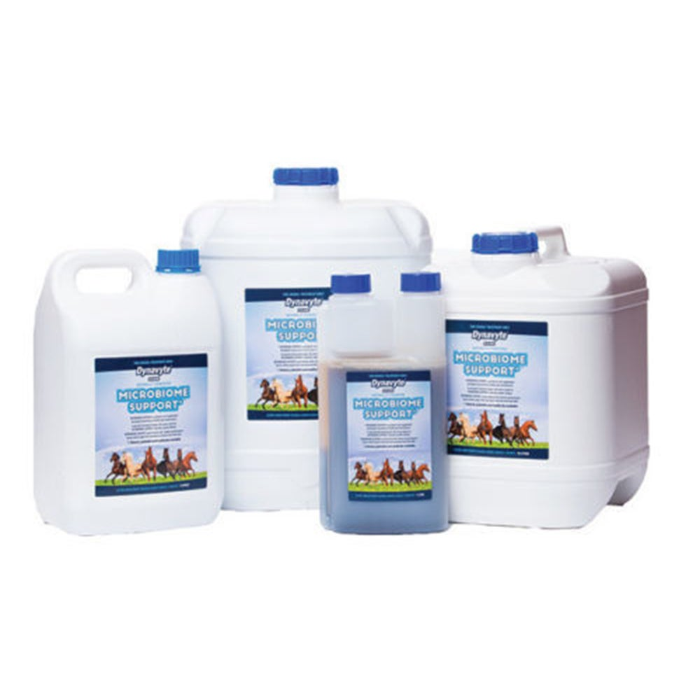 Dynavyte Equine Microbiome Support Healthy Gut Horse Supplement 5L