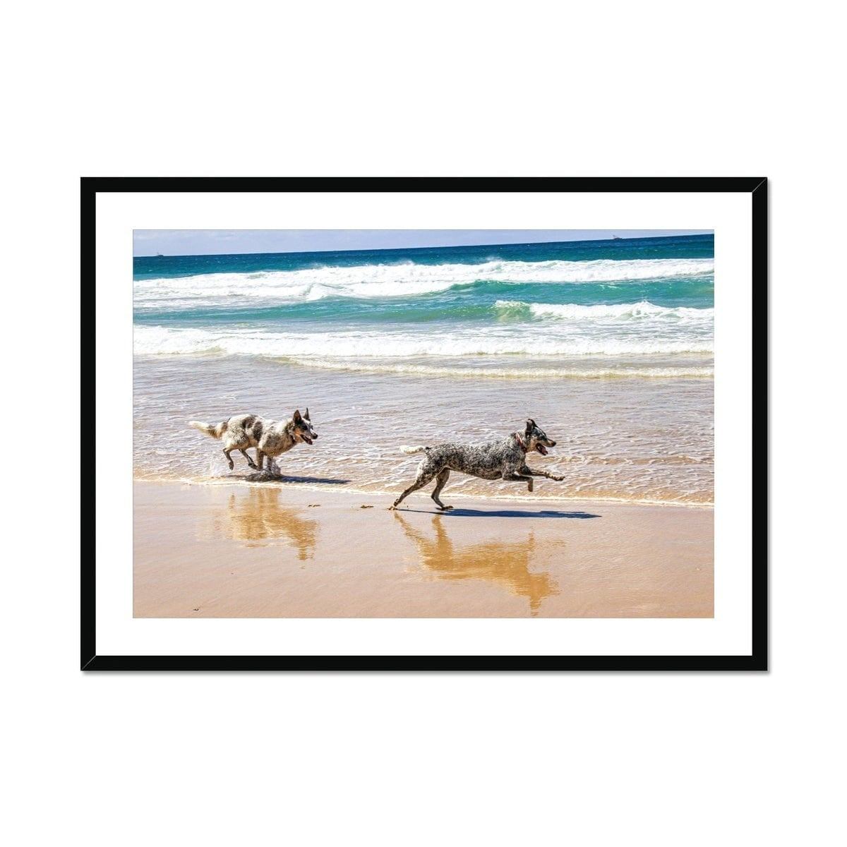 Byron Bay Dogs Framed & Mounted Print