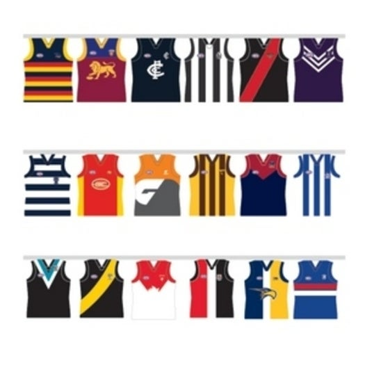 AFL All Team Party Paper Bunting