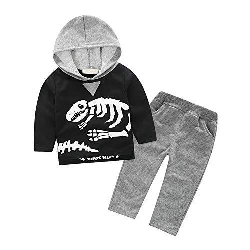ggudd Boy's Tracksuit Hooded Sweatshirt Tops and Pants Dinosaur Printed Clothing Set (Grey,2-3 Years)