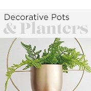 Decorative Pots & Planters