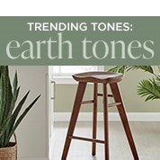 Trending Tones: Earth Tones