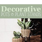 Decorative Pots & Plant Stands