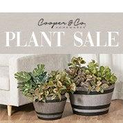 Cooper & Co. Plant Sale