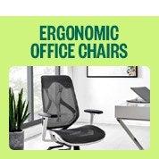 ErgoDuke Ergonomic Office Chair Clearout