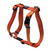 Pet Collars & Harnesses